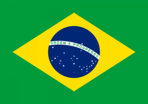Flag of Brazil 300x210 - Branches