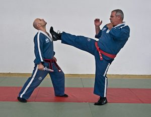 Kami krav magen 29 300x233 - Self Defense Richmond Hill